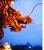 dragon_main__thumb